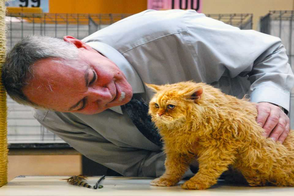 Gary Powell and Selkirk Rex kitten - Cable